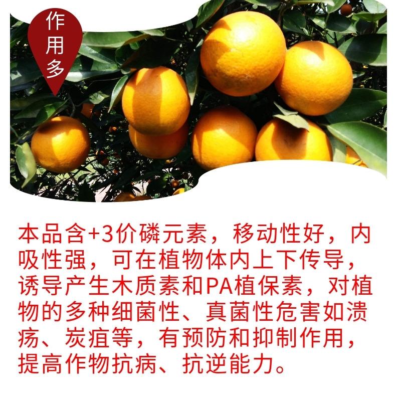 仲禧泉亚磷酸钾1583885411
