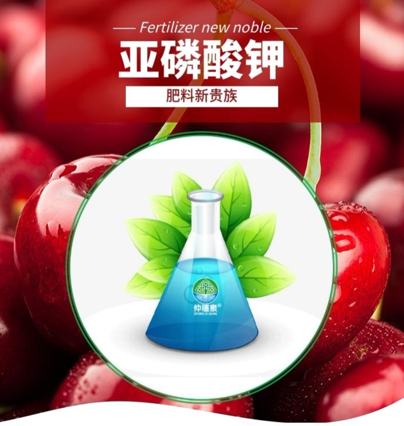 仲禧泉亚磷酸钾