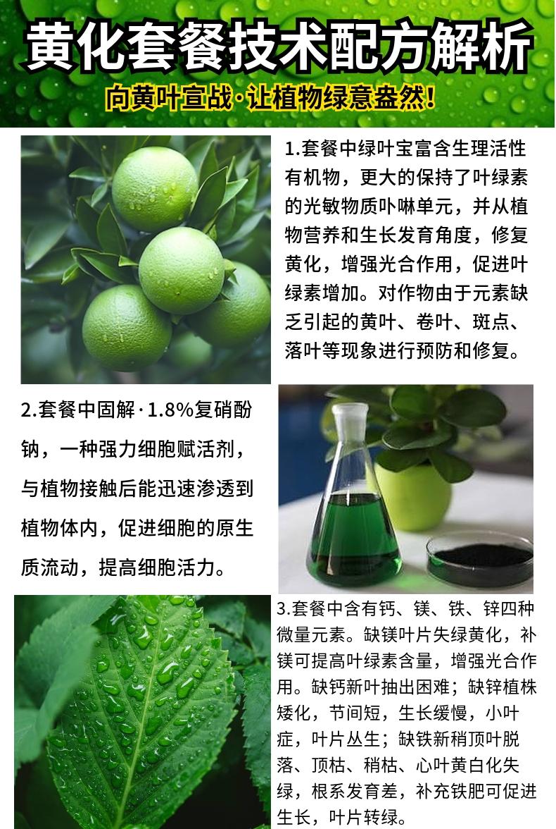 黄化病15803885411仲禧泉